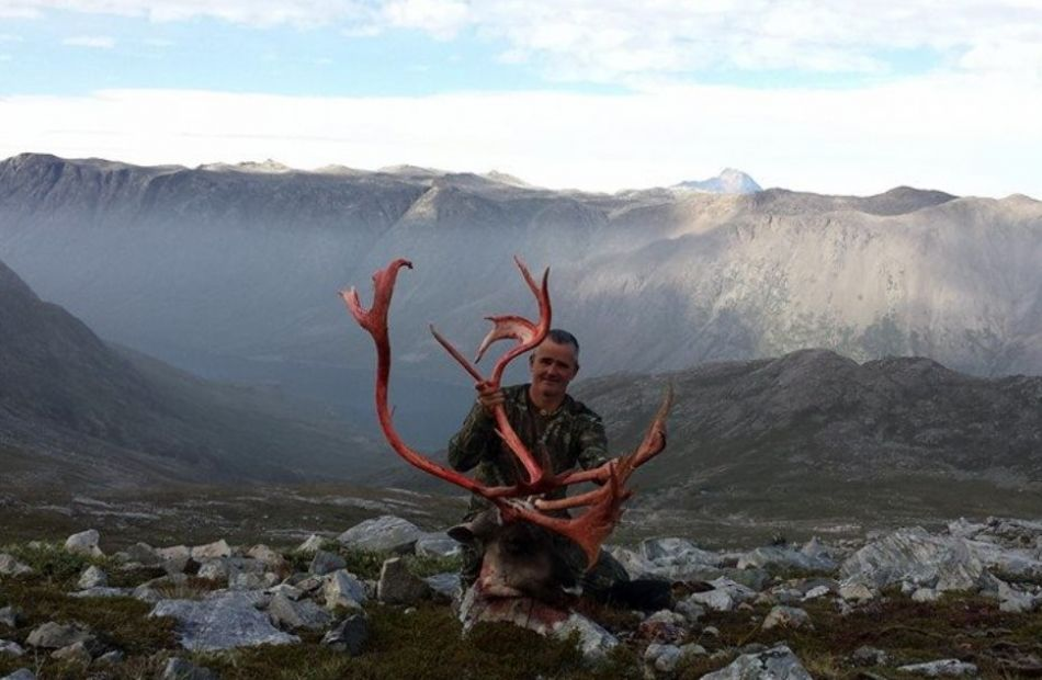 Caribou with Bowhuntinggreenland