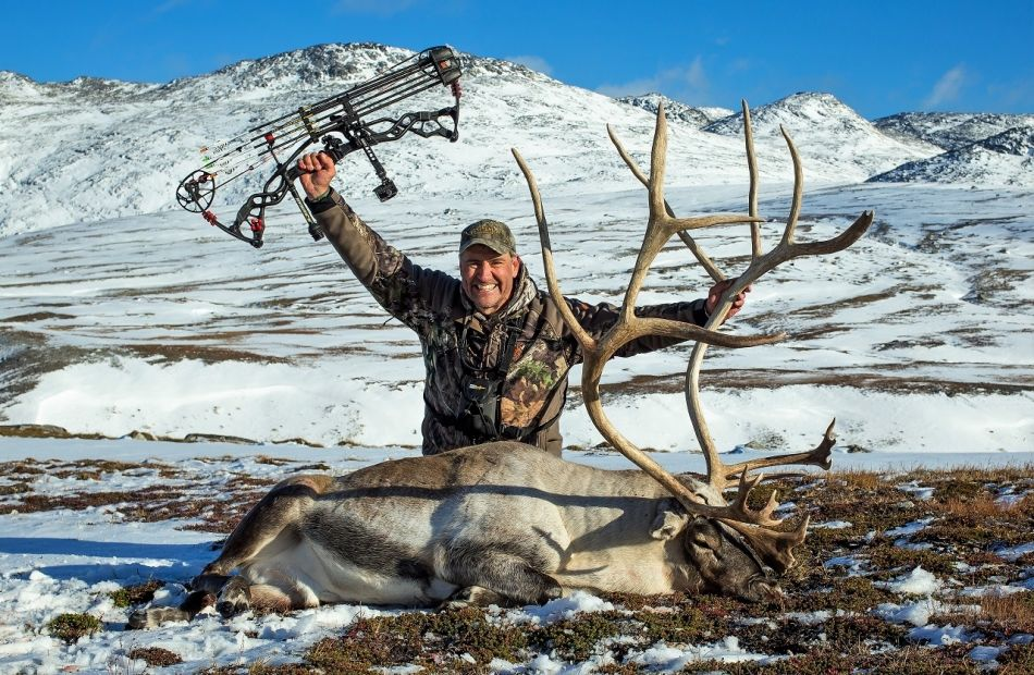 Bowhunting Caribou in Greenland