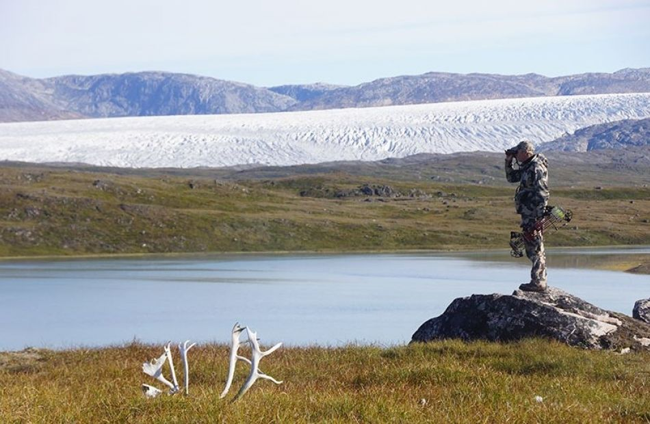 Hunting Arctic Island Caribou in Greenland