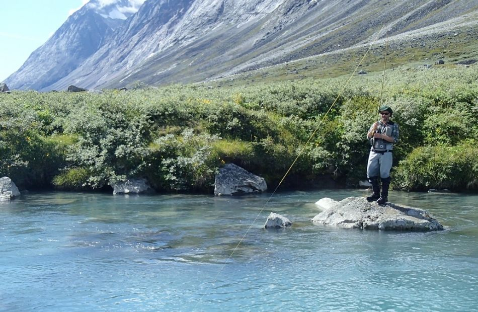 Greenland fly fishing arctic char