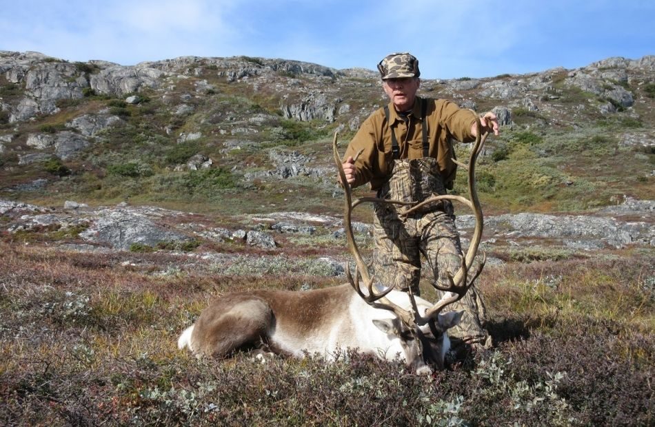 Hunting Caribou in Greenland