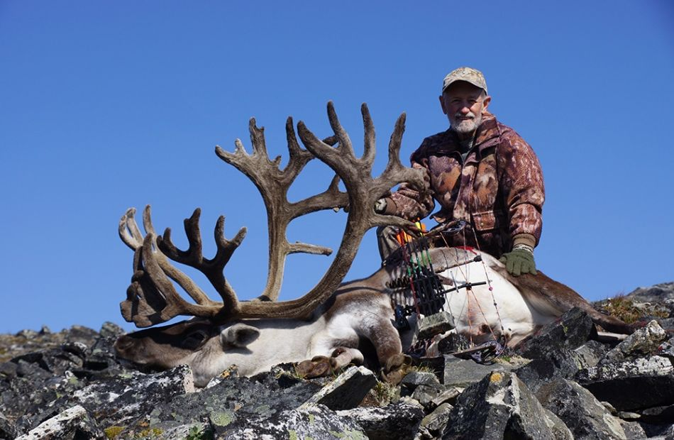 SCI world archery Arctic Island Caribou in Greenland