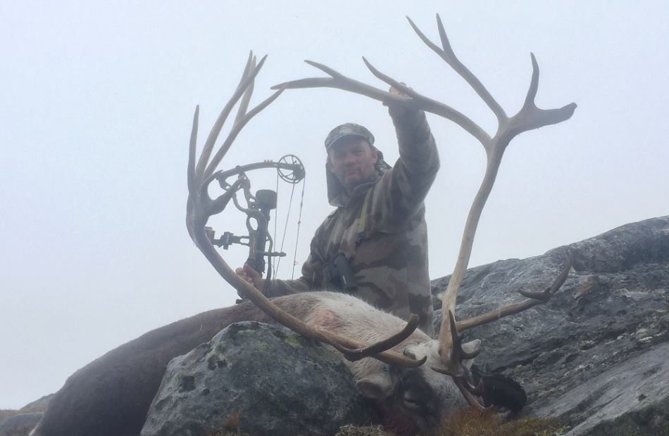 Caribou hunting Greenland